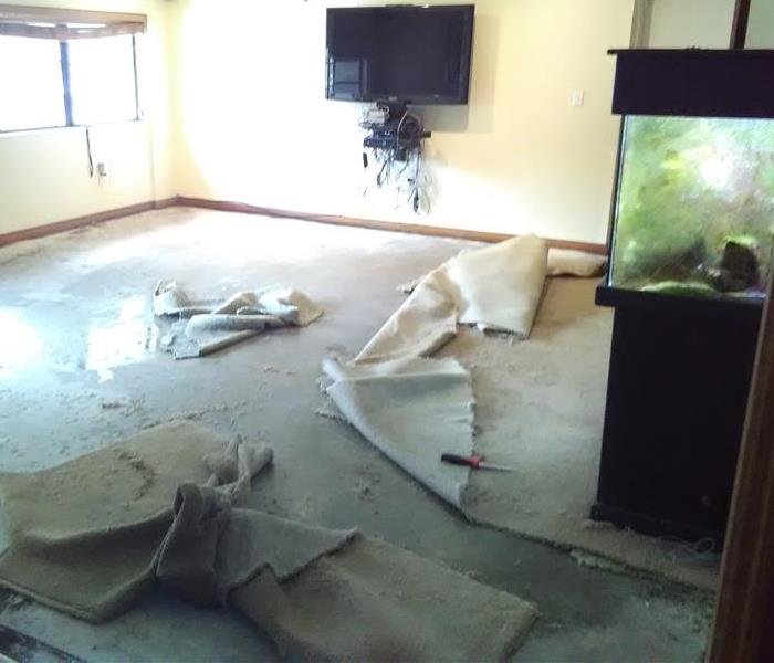 Homestead Living Room Sustains Water Damage