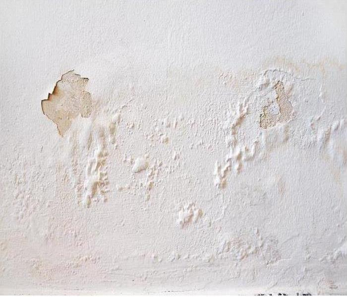 Paint peeling on water damaged wall