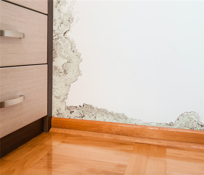 Water Damage Eliminate Unnecessary Stress During Water Damage Remediation in Your Cutler Bay Home