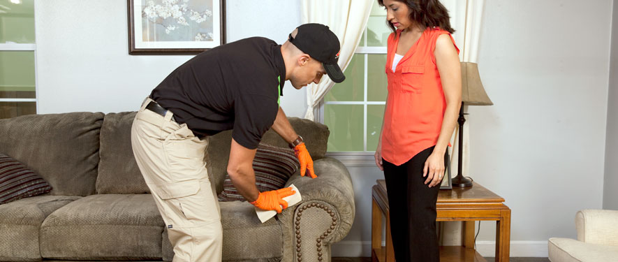 Cutler Bay, FL carpet upholstery cleaning