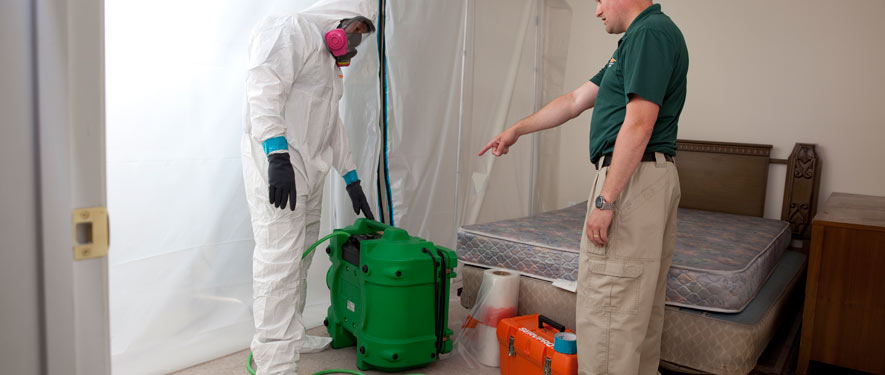 Cutler Bay, FL mold removal process